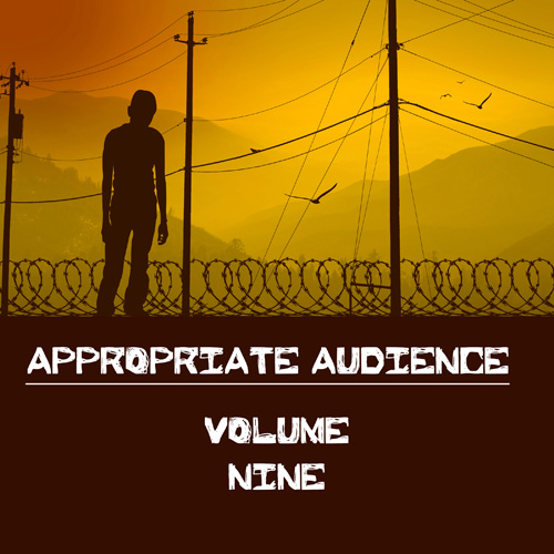 Appropiate Audience, Vol. 9