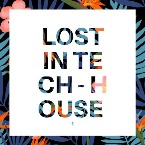 Lost in Tech-House, Vol. 1